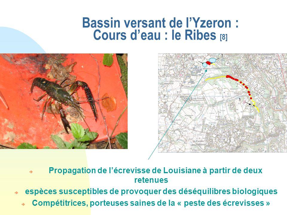 Bassin versant de l'Yzeron : Cours d'eau : le Ribes [8]